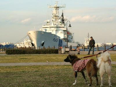 船とチビモコ