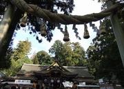 大神神社拝殿と大注連縄