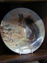 リスの絵皿