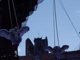 空飛ぶフクロウのモンスター