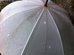 花びらがついた傘
