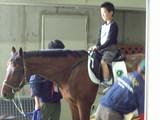 乗馬体験をする子供