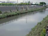 水位の戻った恩地川