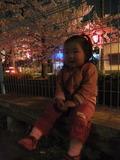 2012年4月10日玉串川の夜桜見物のユーカちん