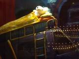 サンタを待ちながら眠るリサ