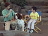 男の子と犬1