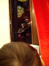 カーテンから覗くユーキボン2