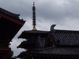 亀の池から見える四天王寺の五重塔