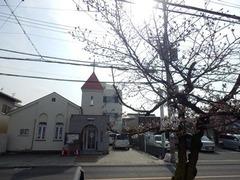 20160331福万寺付近の桜