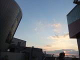 夕暮れのサントリーミュージアムと海遊館