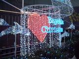 点灯したクリスマスイルミネーション2