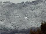 雪化粧した水呑地蔵のお堂
