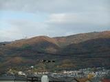 茶色が目立つようになった晩秋の生駒山