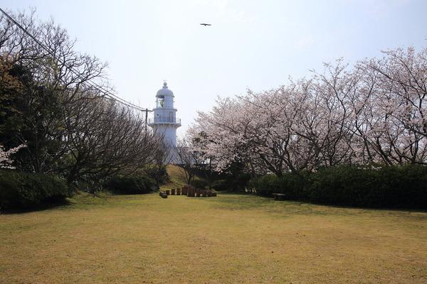 樺島灯台3 (1)