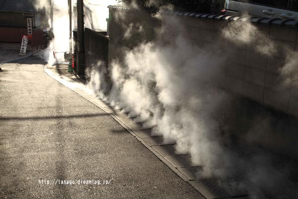 蒸し湯猫1 (3)