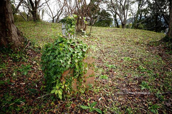 神ノ島高砲台3