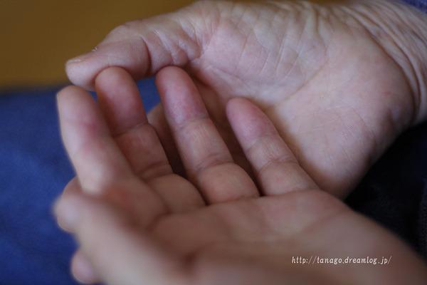 母さんの手