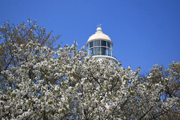 樺島灯台3 (2)