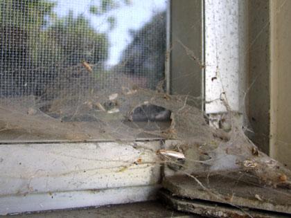 2012_07_13-window