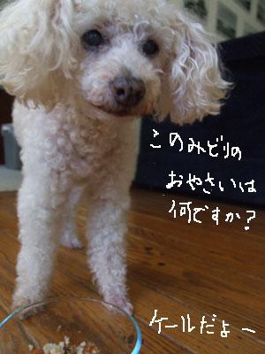 2013-07-15-chibi8