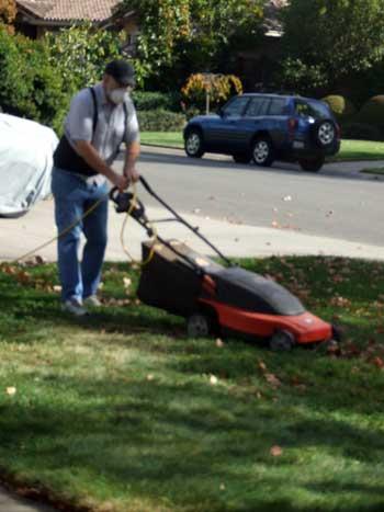 2014-10-26-lawn