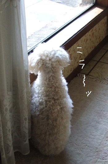 2012_04_26-watch