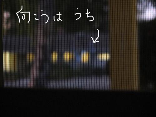 2019-09-09-simba3