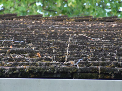 2015-08-31-roof6