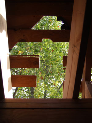 2015-08-31-roof2