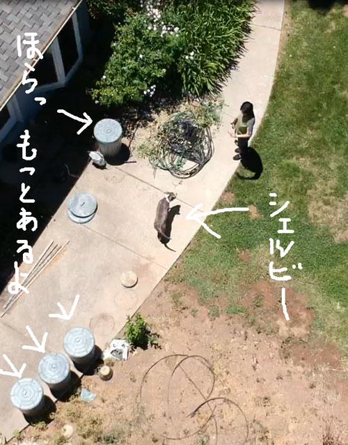 2018-06-10-dron9