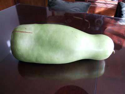 2014-11-20-melon1
