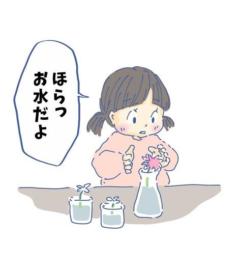 IMG_4104