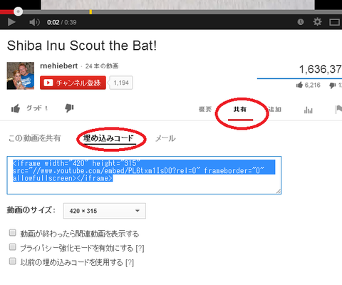Youtube_ss1