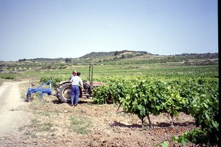 2002 gandesa2