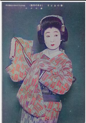 18日本の印象_腰元アップ