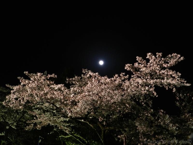 2018-03-31_n36