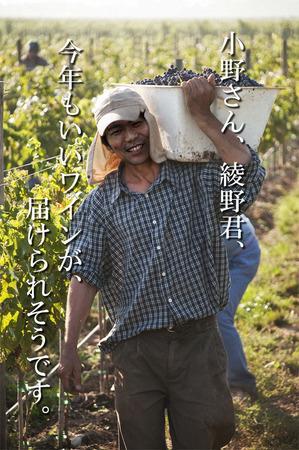 wain-sugiyama