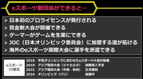 japan-pro gamer2018-tokaigi