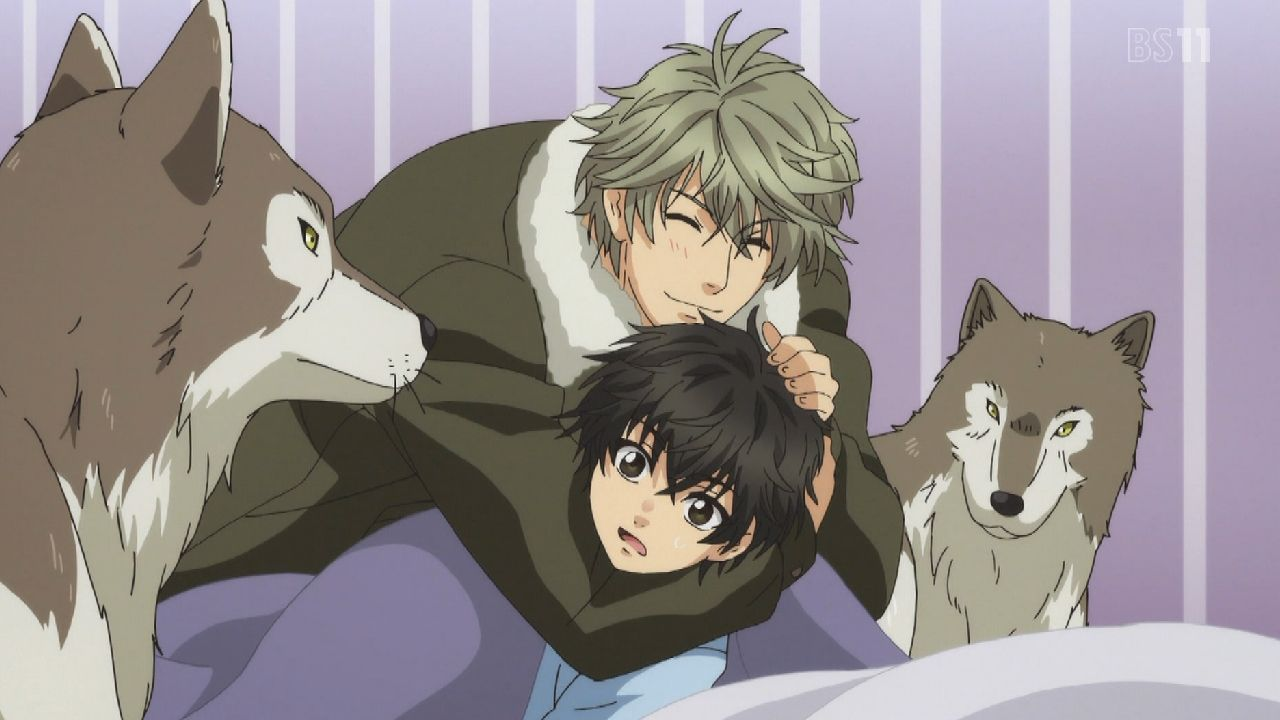 super lovers bs
