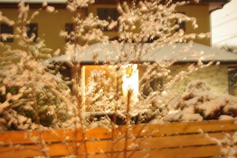 大雪バレンタイン