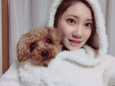 【AKB48G】メンバーのペットで一番かわいいのって北川綾巴ちゃんちの五ちゃんだよな