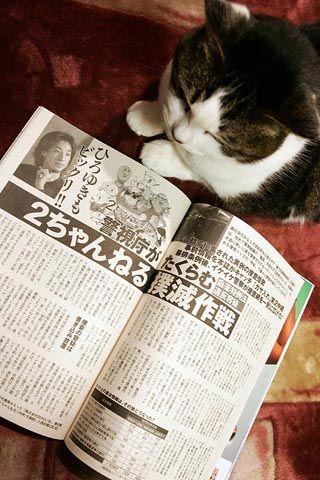 【AKB48G】本人に見せても恥ずかしくない個スレ【2ちゃんねる】