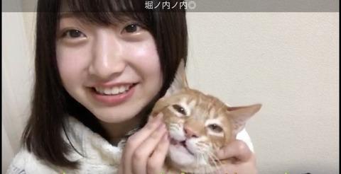 SKE48杉山菜田里、NMB48堀ノ内百香、HKT48石橋颯の中で一番の逸材は誰か?