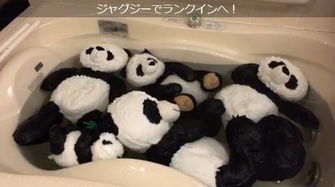 【SKE48】白井琴望のがっつりパンチラきたあああ!!!