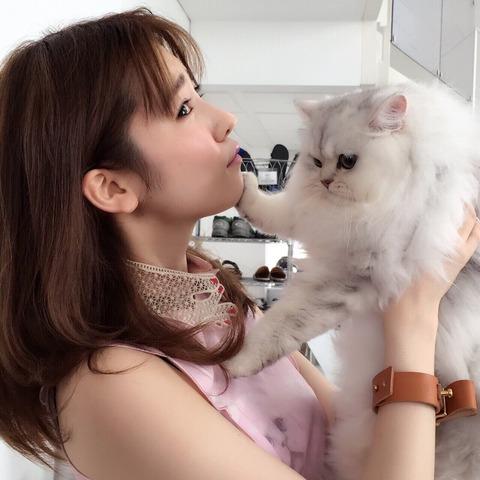 【画像アリ】ぱるる、強烈な右ストレートを顎に喰らう!!!【AKB48・島崎遥香】