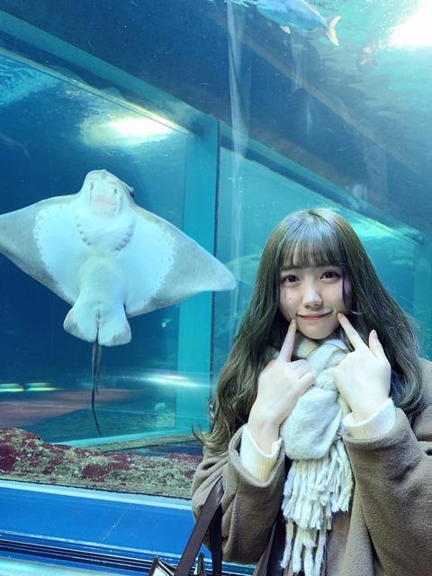 【画像】NGT48メンバーの写真に○ンコが写り込む