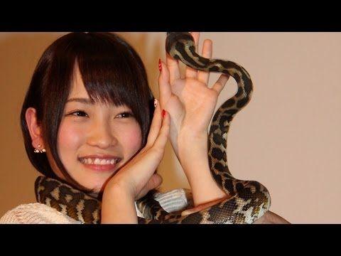 爬虫類系のメンバー達を紹介して下さい!