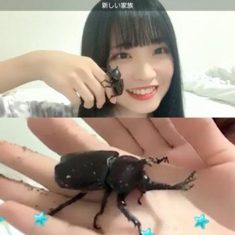 【朗報】SKE48入内嶋涼さん、家族が増える