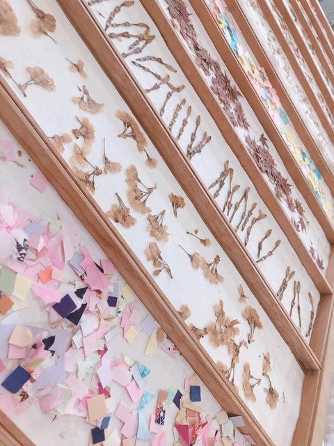【NGT48】荻野由佳「山口県でとっても綺麗な桜をみれるところを見つけた」