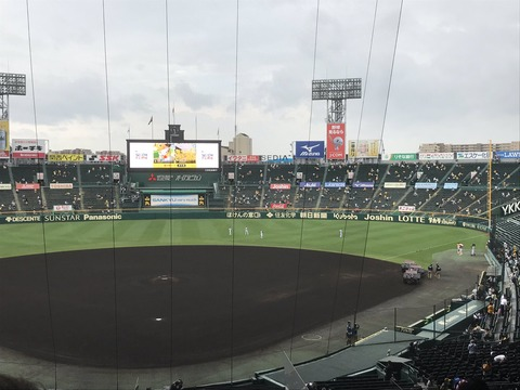 【参考画像】ソーシャルディスタンス保って客入れるとこうなる【プロ野球】